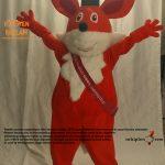 Tilki Maskot Kostümü / New Island Univesity / KKTC