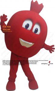 nar maskotu pomegranate mascot costume